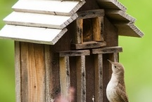 ~Bird houses and feeders for the garden!!~ / Lets encourage more native birds into our gardens. Share with us ideas for feeders and nesting boxes for the garden. TO BE ADDED TO MY GROUP BOARDS ===> Go to https://www.pinterest.com/tranquilwild/ and follow the directions from there.  / by Tranquil Wilderness