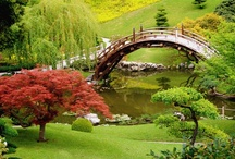 Japanese Gardens / Japanese gardens are so well planned, often creating miniature landscapes or forests. They were originally created for the Japanese emporers and nobles. If you like this board don't forget to have a look at the rest of my boards at http://pinterest.com/tranquilwild/ / by Tranquil Wilderness