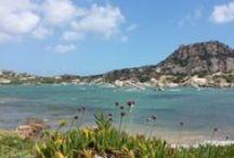 bellezze Arcipelago di La Maddalena / scogliera , panoramica , spiagge,tramonti etc etc