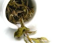 White Tea / The rarest of teas...