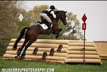 Horse and rider in action! / Happy pinning! / by Denise Rogers