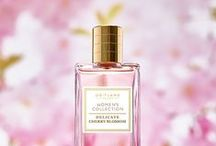 Fragrance Favourites / From crisp and clean to feminine florals, a signature scent is your secret beauty weapon.