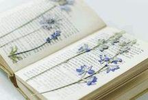 livro como arte