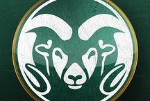 Proud to be a CSU Ram! / by Kendra Harris