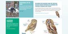 School: natuur en biologie / Lesmaterialen voor groep 1-8 van het basisonderwijs rond natuur en biologie.