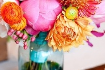 Flowers in jars /  jugs, tins and and just about any recepticle you can imagine, oh and not forgetting a few vase's. / by Julie Bentley