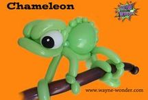 Wayne Wonder's Balloon Animals / My balloon art of all creatures great and small, let me know if there is anything you would like to see me attempt.