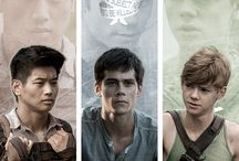 The Maze Runner / And All The Other Things That Go Along With It.