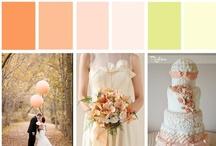 Wedding - Peaches & Cream