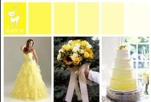 Wedding - Yellow