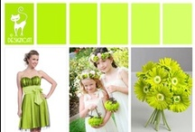 Wedding - Green - Lime Green