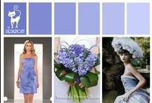 Wedding - Blue - Hyacinth