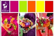 Wedding - Mixed Spice  / Indian Spice inspired colour pallet