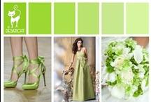 Wedding - Green - Apple Green