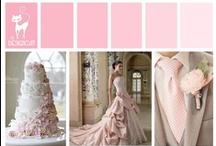 Wedding - Pink - Pastel Pink