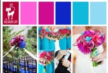 Wedding - Pink & Blue - Bright