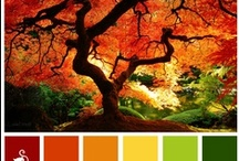 Wedding - Seasons - Autumn / Autumn / Fall Inspired wedding Pallets