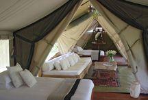 Camping / by 💫Tammy💫 Strecker