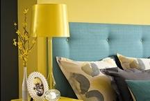 Interior - Blue & Yellow