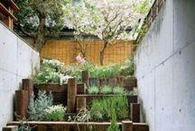 Gardens - Timeless