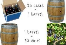 Wine and Wine Making information / Educational Information about Wine