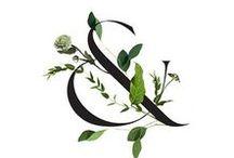 Inspiration: botanical & spa