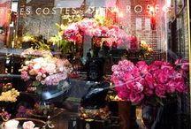 My Fantasy Flower Shoppe / by Patricia Main