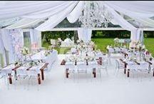 Dekoracje / Najpiękniejsze wystroje sal ślubnych i weselnych oraz kościołów. Zainspiruj się!