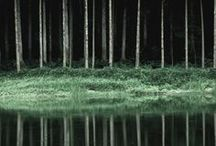 Landscape Tales / Real-time landscapes that could be taken from fairytales, myths and legends.
