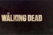 The Walking Dead / My TWD fandom / by Ginger V