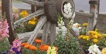 Gardening / Puutarha