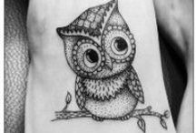 OWL you need is love! / Owls. 'Cause they're just cats with feathers.