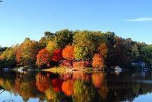 .: SeasonS :. / Nature in seasons.