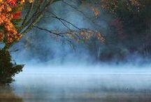 Mist & Mystery