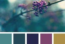 Color Me Vava