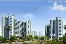 India Real Estate Builders / 71 property presents Real Estate Builders in India.  For further details Visit @ www.71property.com