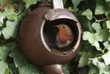 Futterplatz und Tränke für Vögel
