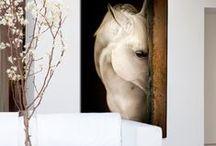 Hotel. Equestrian Culture.