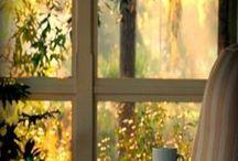 Окно. Window