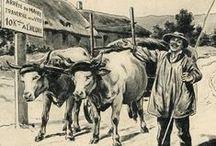 Le Morvan d'hier / Cartes postales et affiches anciennes du XIX siècle