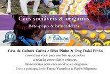 Ong Dalai Pinho / Workshop de origami na Casa de Cultura Carlos e Diva Pinho - FUNCADI.