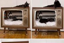 ★ Hacks für meine Katze / Ich liebe meine Katze! Ich möchte ihr das Leben in der Wohnung so angenehm wie möglich machen. Dafür sammle ich hier Ideen.