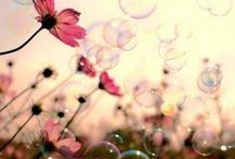 Kad sanjam... onda... / Izmedju jave i sna...