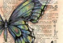 lepidopterology / Lepidopterology