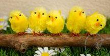Pasen / Alles om zelf te knutselen voor Pasen :-).