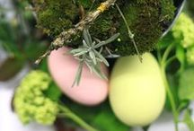 happy easter / I am not that much into easter decoration... At least I wasn't, here I am collecting beautiful images, that could convince me to decorate more on easter...