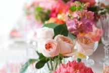 Flowers / It is estimated that there are about 400,000 flowering plant species. Flowers add visual appeal, colour and fragrance to our lives. And there is the joy in giving and receiving them. / by Poodle Boudoir