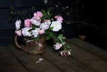 moody flowers / photography of moody flowers