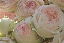 Flowers / by Lauren Christman