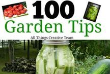 Vegetable Gardening / Tips, tricks, and tutorials for getting the most and best produce out of your vegetable garden! / by Cottage at the Crossroads